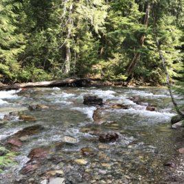 *Replenishing Camp Montana