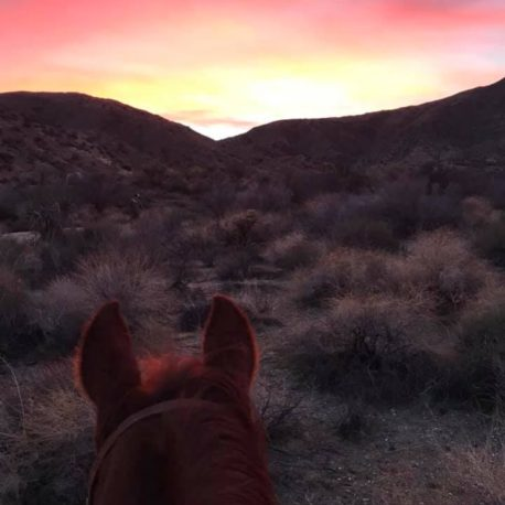 Sunset ride at the ranch